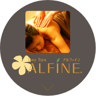 alfine btn